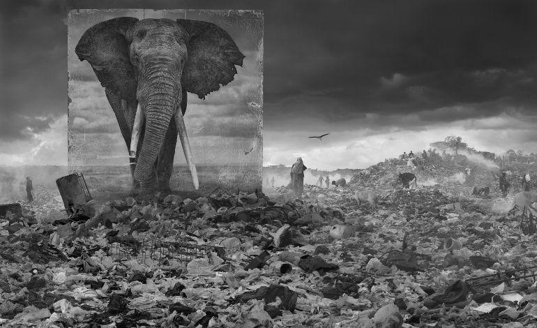 O'Art, Ünlü İngiliz Sanatçı Nick Brandt'i Ağırlıyor