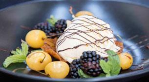 Geleneksel Fransız Dondurma ve Sorb