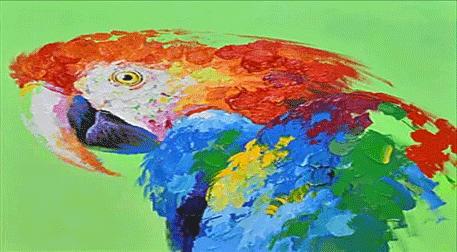 Masterpiece Galata Resim - Papağan