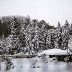 Erkin Atacan © Bahçeköy Kar