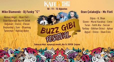 Buzz Gibi Festival - 3. Gün