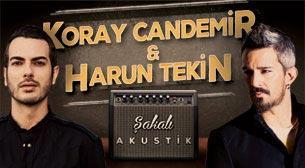 Harun Tekin & Koray Candemir