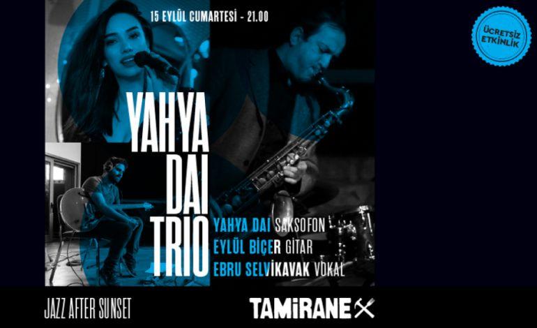 Yahya Dai Trio