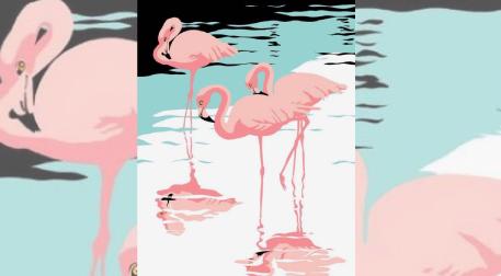 Fırça Sende - Flamingo