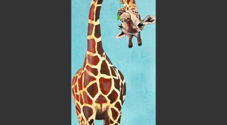Fırça Sende - Zürafa