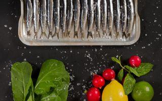 Lacivert Hamsi Balığı Sezonunu Açtı