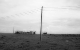 Zambak ve Ahlat - Ozan Yavuz