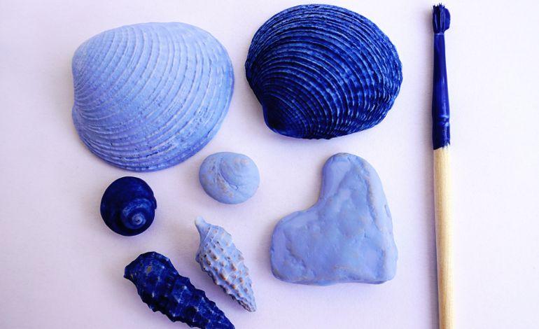 Deniz Kabuğu Atölyesi