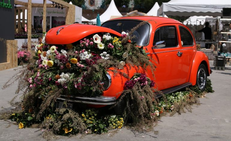 FloralFest 19 Kombine