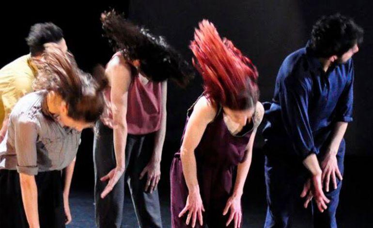 Performans: Vorteks