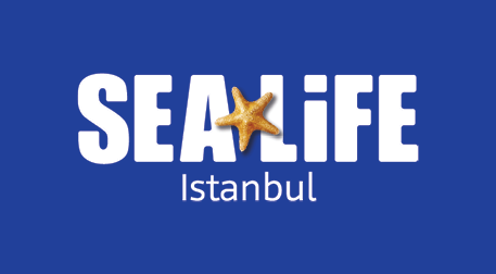 Sea Life Aile Paketi 3