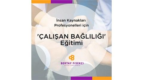 İnsan Kaynakları Profesyonelleri için Çalışan Bağlılığı Eğitimi - ONLINE