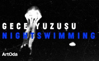 Gece Yüzüşü