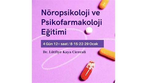 Nöropsikoloji ve Psikofarmakoloji Eğitimi