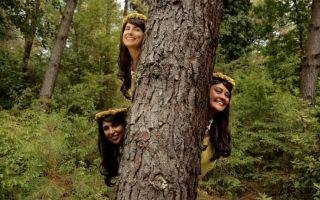 Nesne Kültüründen Dijital Kültüre: Zevk Meselesi