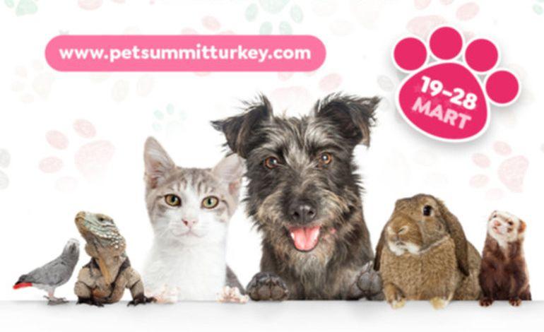 Evcil Hayvan Zirvesi Pet Summit Turkey için Geri Sayım Başladı!