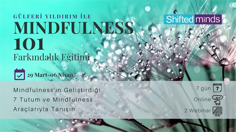 Mindfulness Farkındalık Eğitimi 101