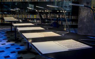Ardışık II Kazı ve Yüzey - Deniz Gül