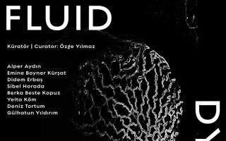 Fluid Dynamics