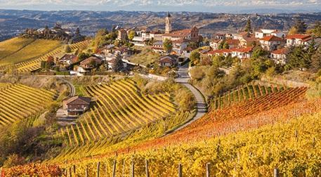 Toscana Bölgesi ve Bağları