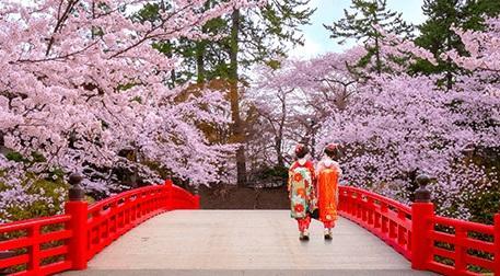 Japonya ve Kyoto Sanal Şehir Turu
