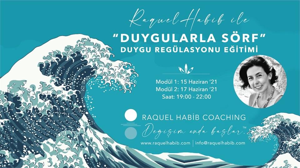 """""""DUYGULARLA SÖRF"""" DUYGU REGÜLASYONU EĞİTİMİ"""