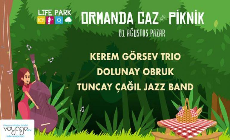 Ormanda Caz & Piknik - 1 Ağustos