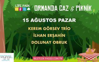 Ormanda Caz & Piknik - 15 Ağustos