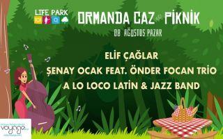 Ormanda Caz & Piknik - 8 Ağustos