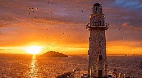 Demokrasi ve Özgürlükler Adası