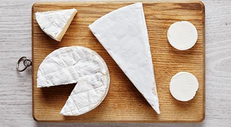 MSA- Vegan Peynir