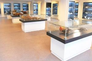 Deniz ve Su Ürünleri Müzesi