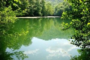 Doğadan Bir Hediye - Yedigöller Fotoğraf Sergisi