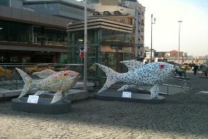 Taksim Meydanı'nı Balıklar Bastı