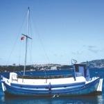 Barba Teknesi ile Artık Boğaz'da!