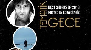 Tematik Gece: Best Shorts of 2013 by Bora Cengiz