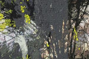 Çiçekli Oda