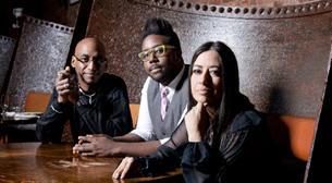 Omar Hakim - The Trio of Oz