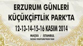Türkiye'nin 81 Şehri:Erzurum Günleri